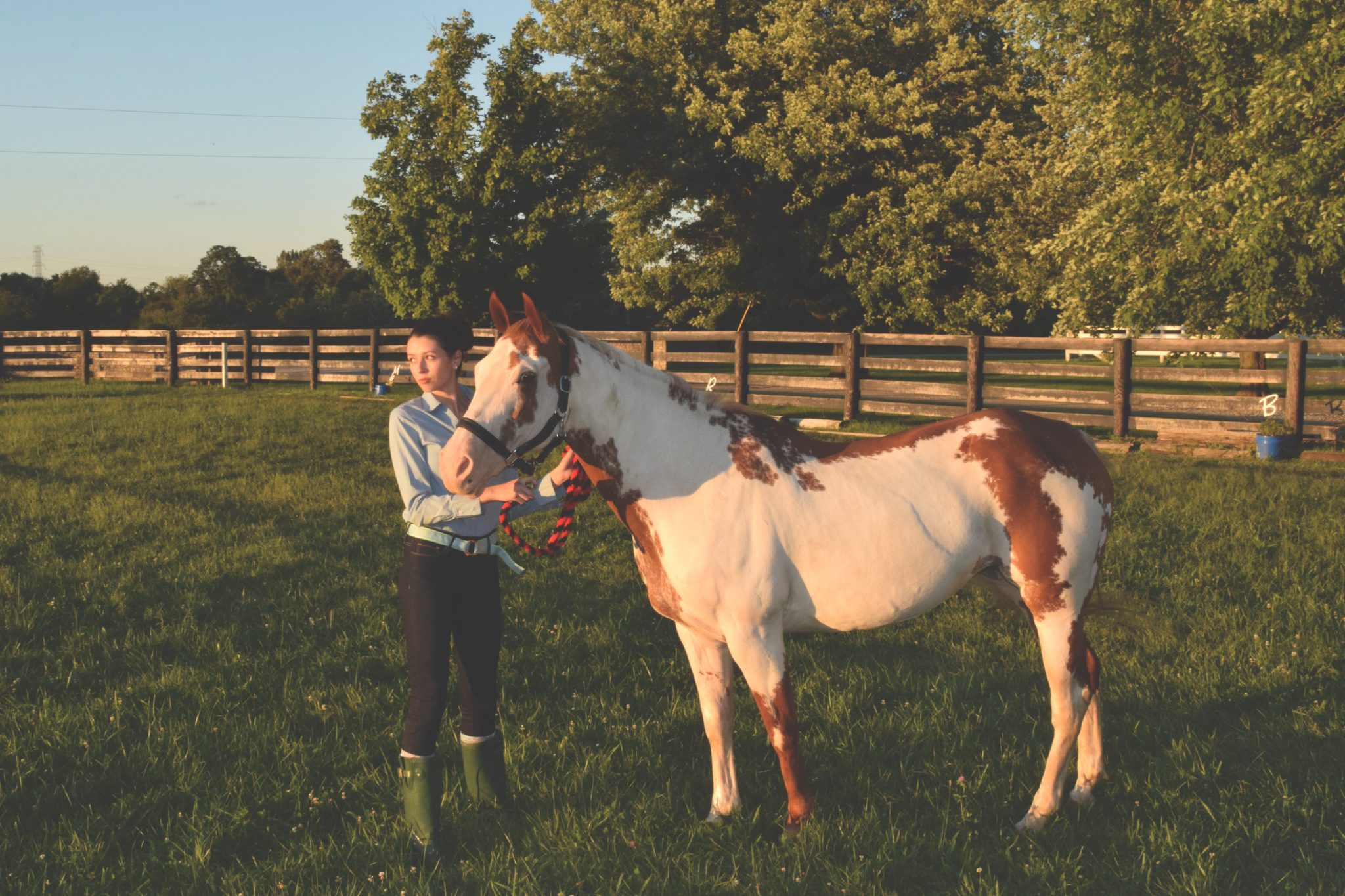 Equestrian Prep