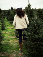 Frolicking at the Christmas Tree Farm