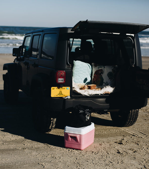 A Picnic at the Outer Banks