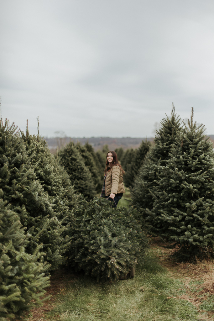 Family Photoshoot at the Christmas Tree Farm